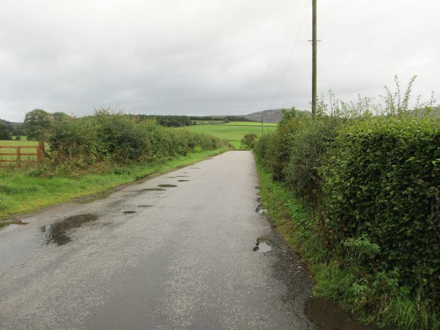 The road to Burnbrae