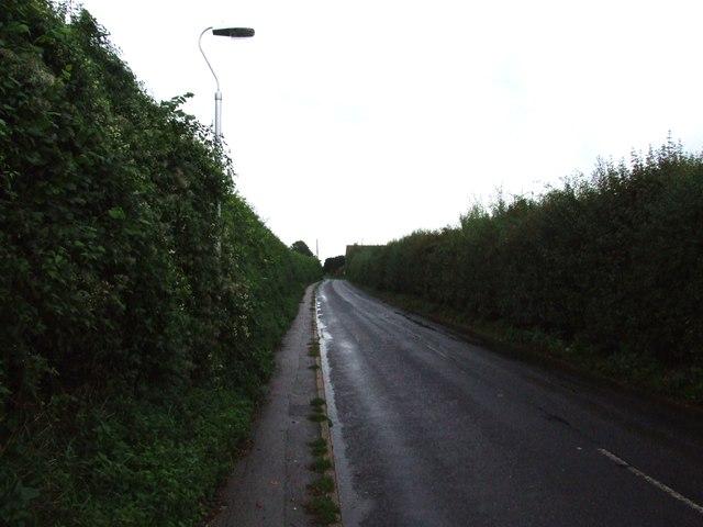 Lynsted Lane, near Lynsted