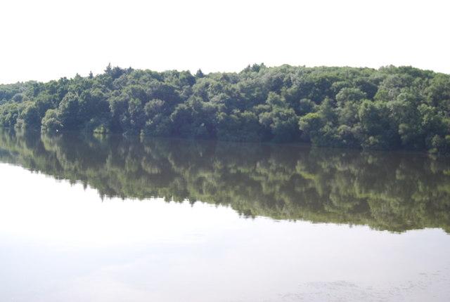 Reflections of Admiral's Bridge Wood