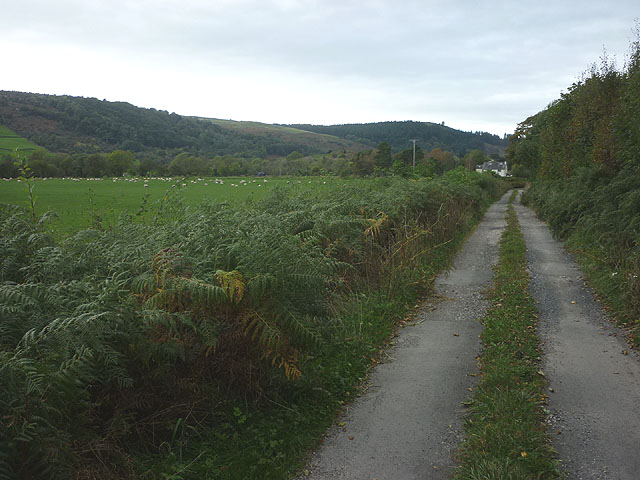 The track to Nichols Wood Farm, Winster Valley