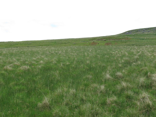 Moorland west of Blackkip