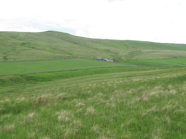 The valley of Cottonshope Burn south of Cottonshope