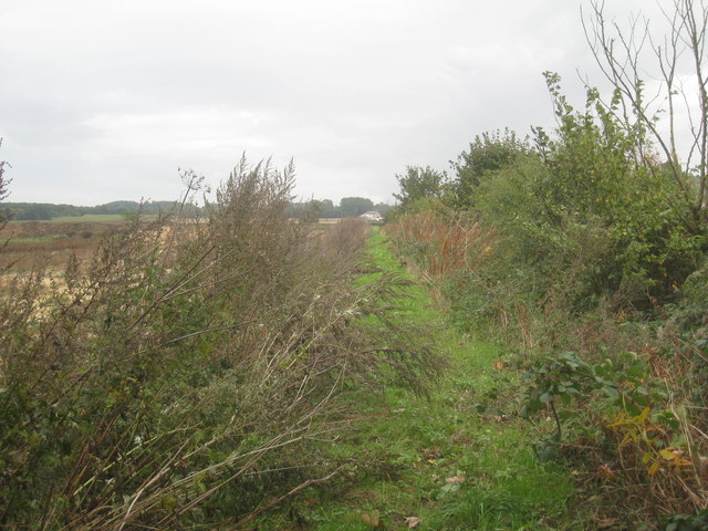 Footpath to Cleatham