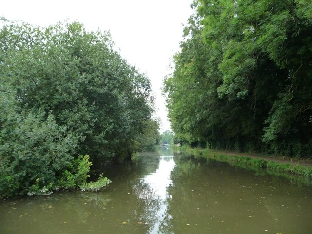 Trees closing in on the Kennet & Avon canal