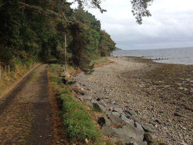 Shoreline near Craigton