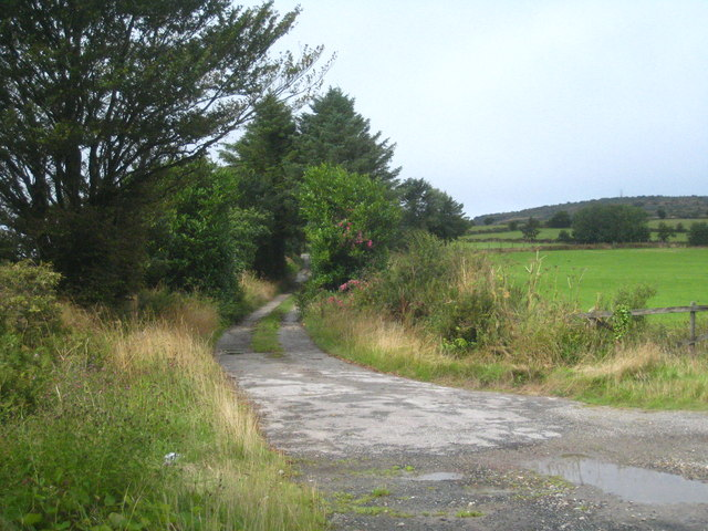 Track leading onto Hingston Down