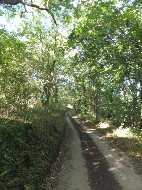 Road to Washford Pyne