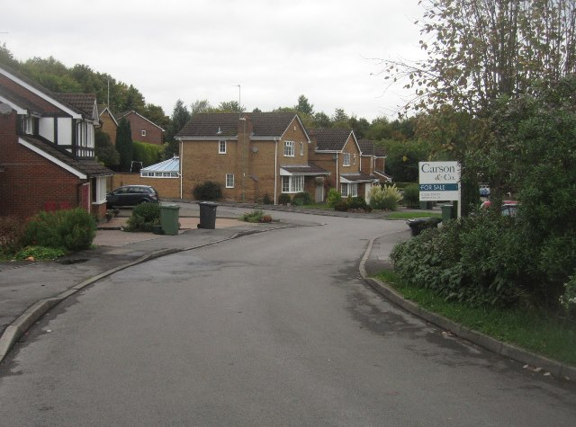 View along Woodgarston Drive