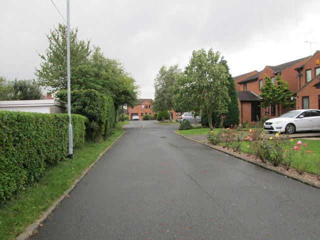 Willow Green - Hedley Crescent