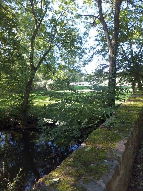 Mill Bridge and the River Dalch (1)