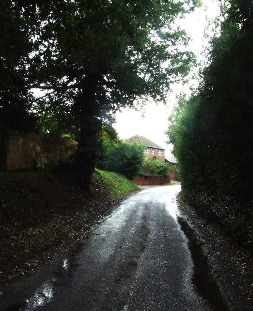 Norton Lane, Norton