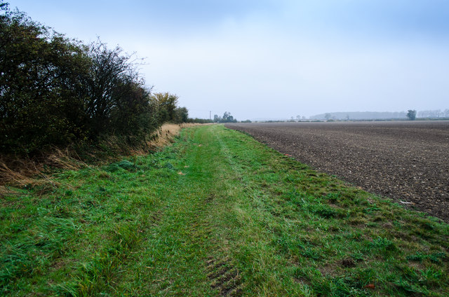 Path towards Coates