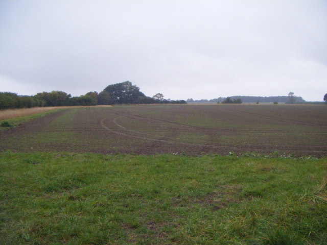 Farmland west of Aslackby