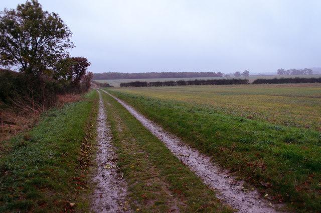 Bridleway to Willingham road