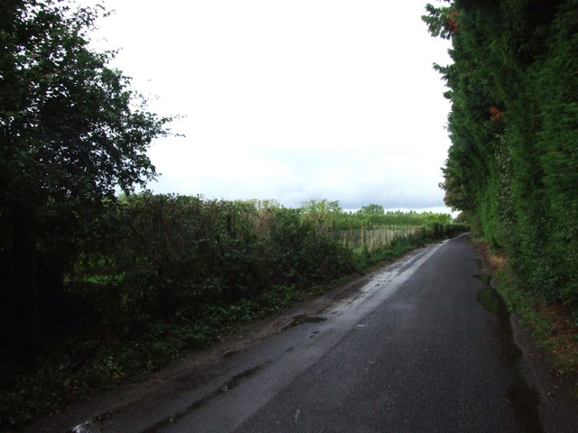 Norton Lane, near Norton