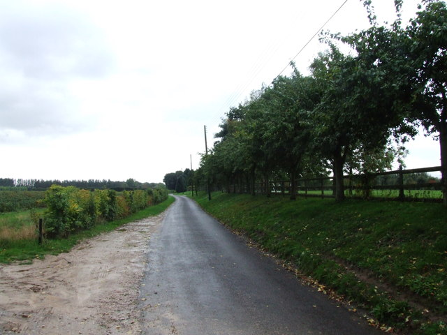 Provender Lane, near Norton