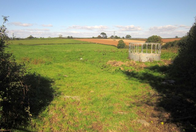 Field north of Landrake