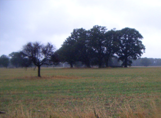 Farmland south of Aswarby