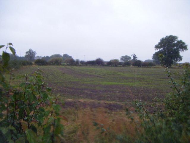 Farmland, Crofton Farm