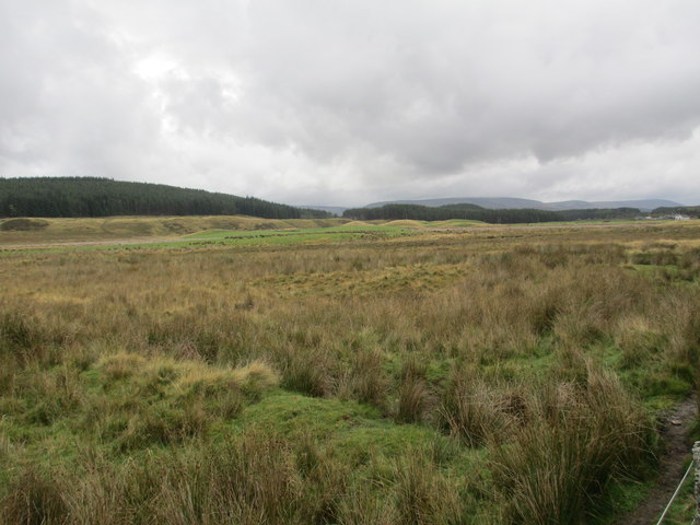 Scrubland near Dalmagarry
