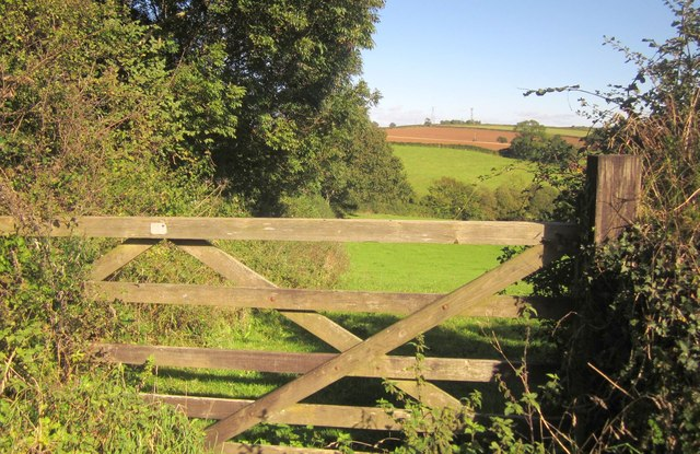 Gate and field north of Landrake