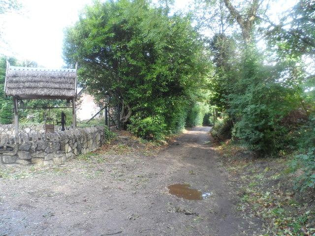 Bridleway near North Court Farm