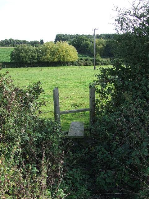 Stile Through Hedge