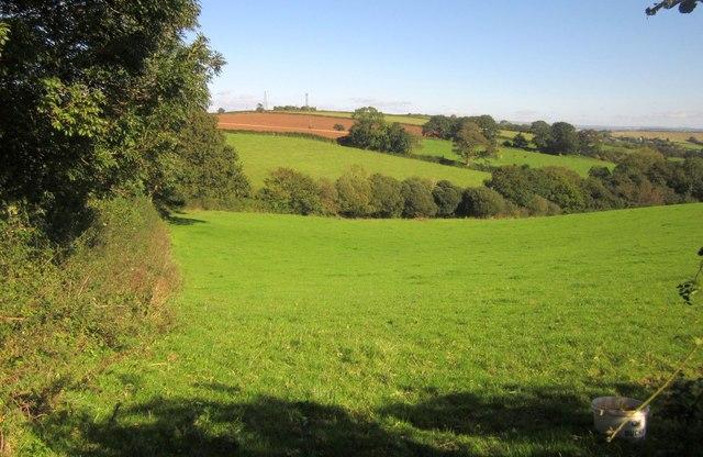Farmland north of Landrake