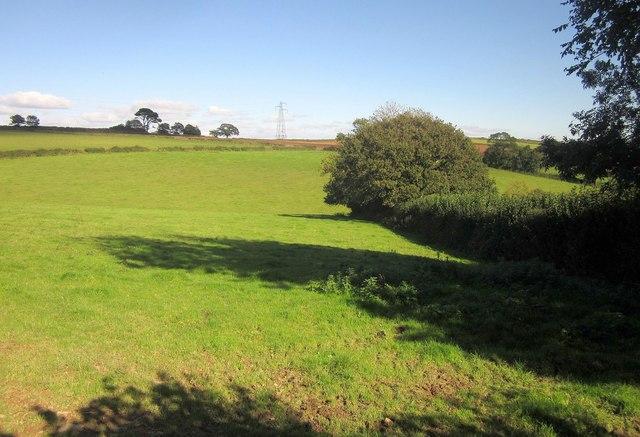 Pasture near Wotton Cross