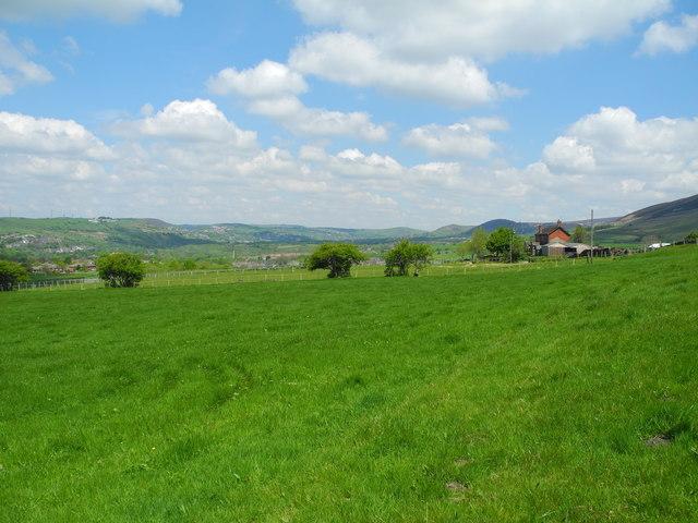 Farmland, Flaxfield