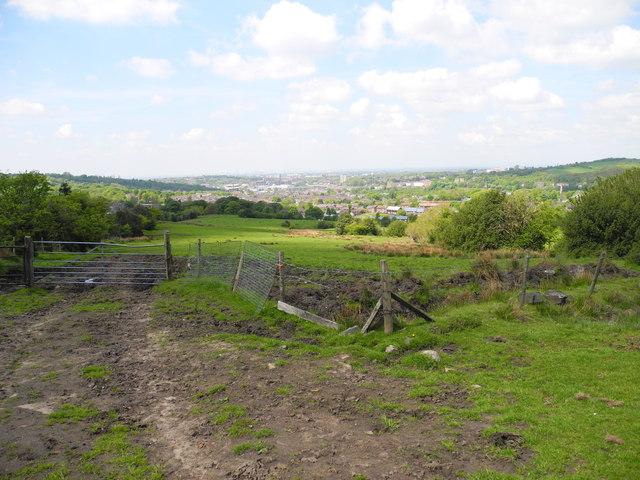 Flaxfield Farmland (1)