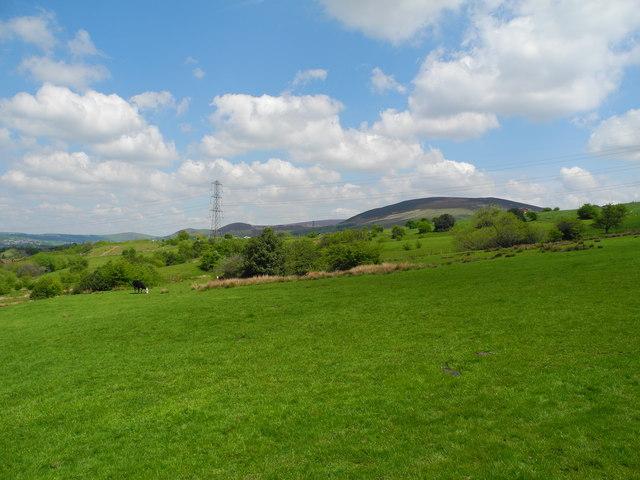 Flaxfield Farmland (3)