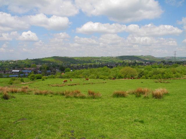 Flaxfield Farmland (4)
