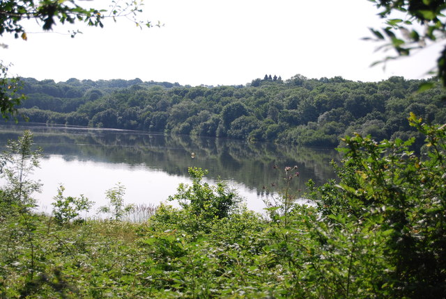 Weir Wood Reservoir