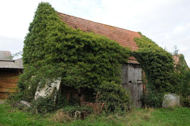 Old barn at Tanhouse Farm, Newnham
