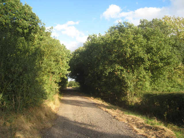 Track to Greave's End