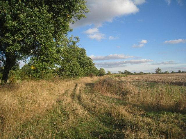 Sleight's Lane