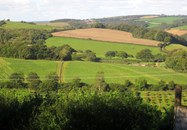 Countryside near Coombe