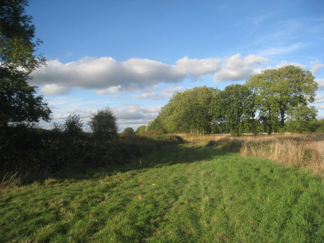 Track from Manor Farm