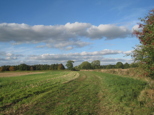 Bridleway from Manor Farm