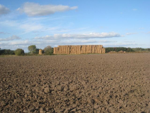 Straw stack near Eastrington