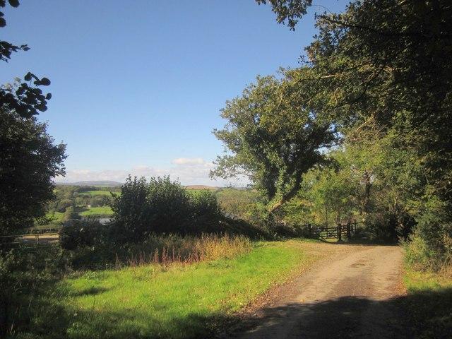 Lane near Penquite
