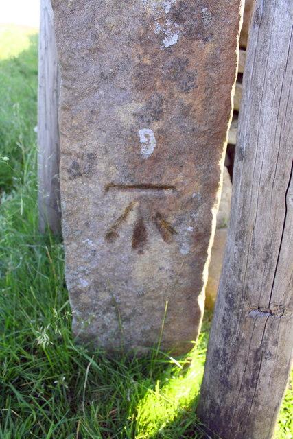 Benchmark on gatepost beside B6255 near Low Gayle