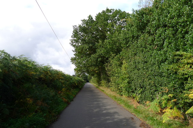 Cycle Route 6 along Old Coach Road
