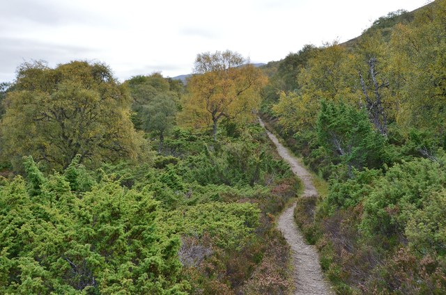 Path in Morrone Birkwood