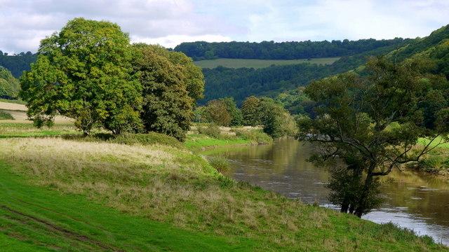 The River Wye from Bigsweir Bridge, 2