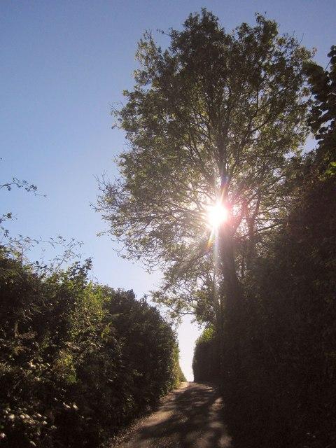 Lane near North Park