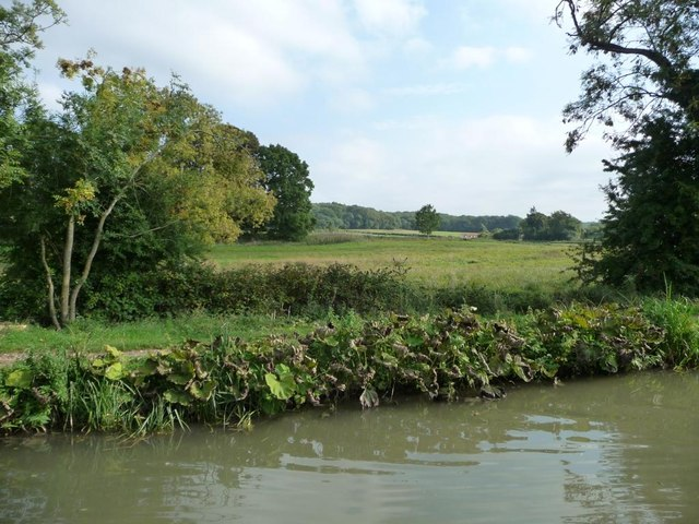 South-east bank, Kennet & Avon canal