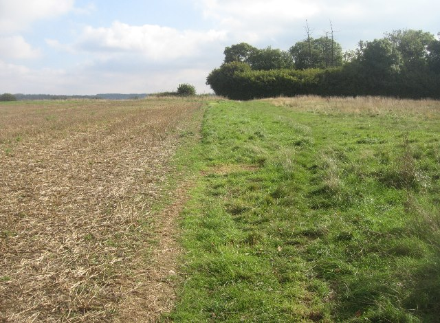 Path towards Southwood Farm