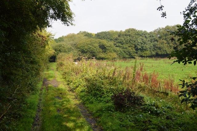 Stoke's Lane
